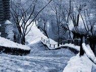 winter8